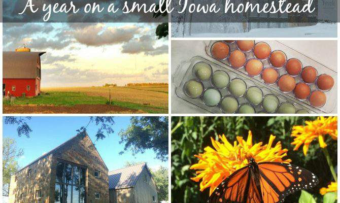 2015 in Review – Our Year on a 5 Acre Iowa Homestead