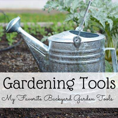 Companion plants you must have in your vegetable garden for Gardening tools you must have