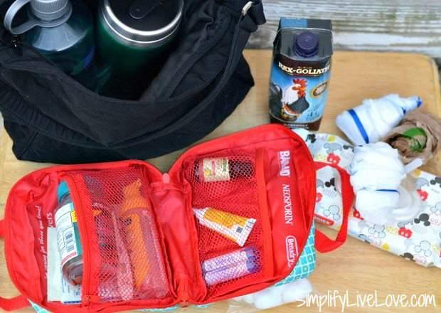 Sanity Savers in Mom's Road Trip Survival Bag