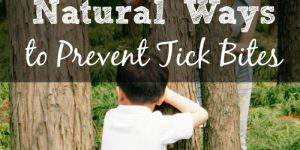 Natural Ways to Prevent Tick Bites