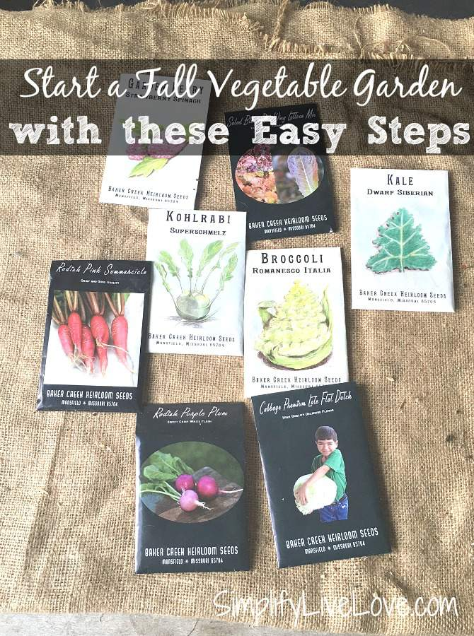 Start a fall vegetable garden with these easy steps.