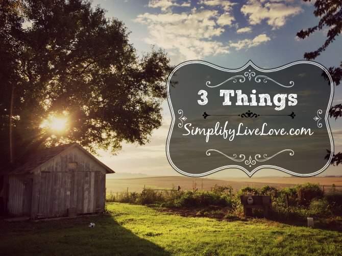 3-things-at-simplifylivelove