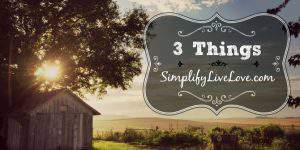 3 Things 9.17.16: My Kitchen, Hip Dysplasia Update, Instant Pot Obsession