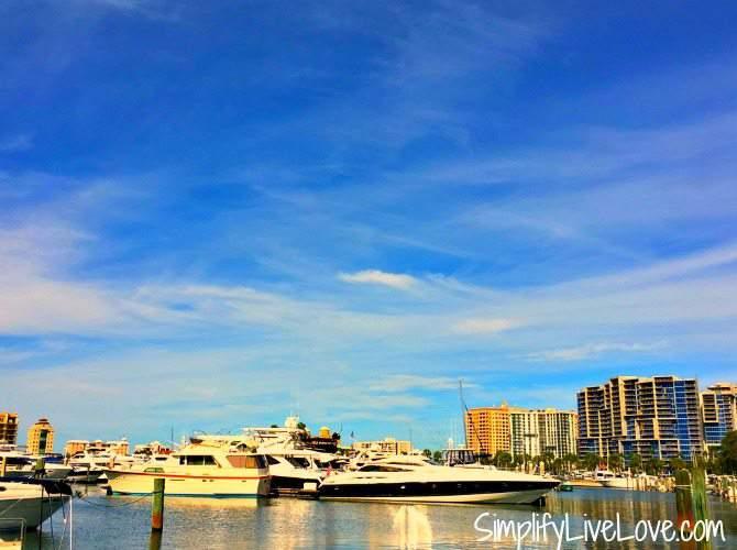 Sarasota Marina at Bayfront Park