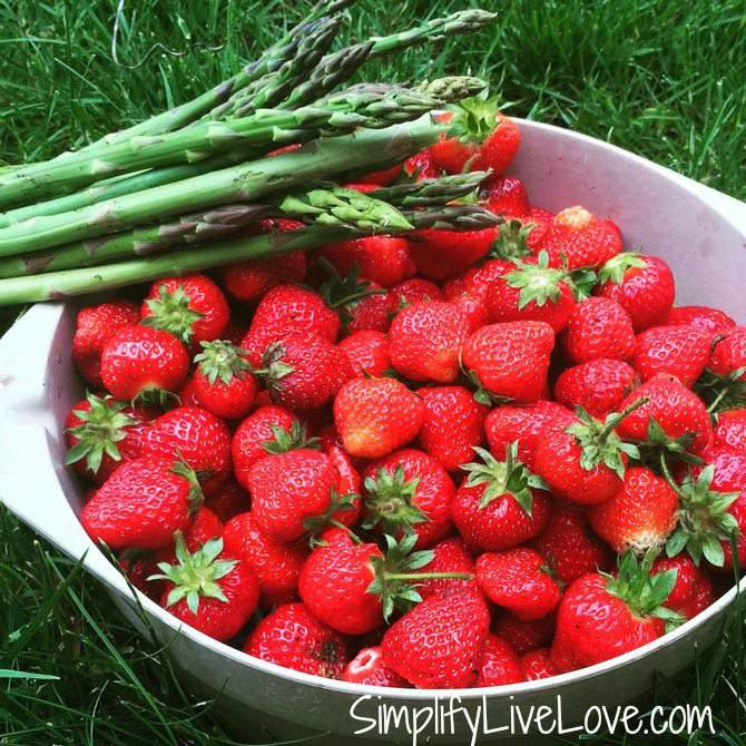 Top 10 Plants for Early Spring Harvest - strawberries and asparagus