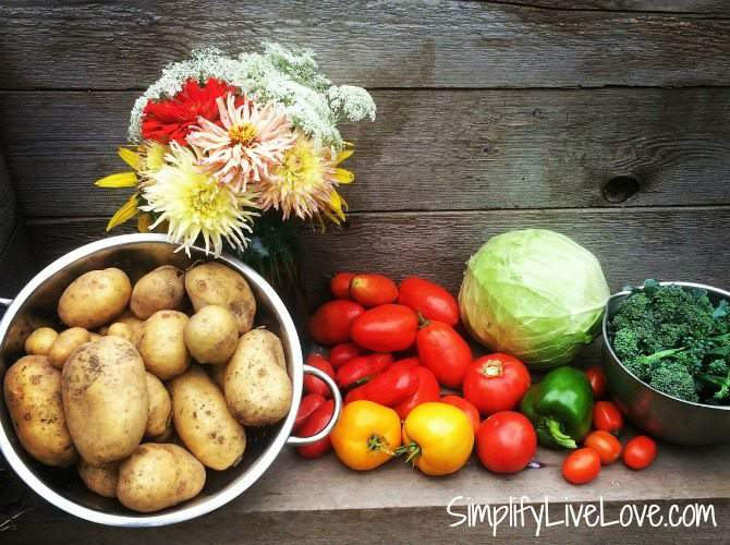grow veggies you like