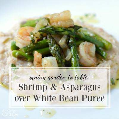 Shrimp & Asparagus over White Bean Puree