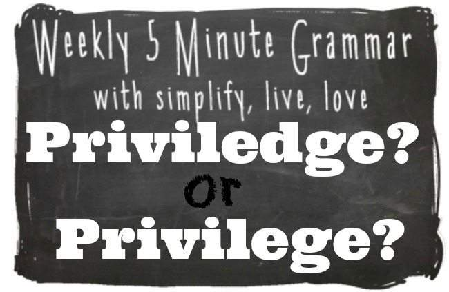 Priviledge or Privilege 5 Minute Grammar Lesson