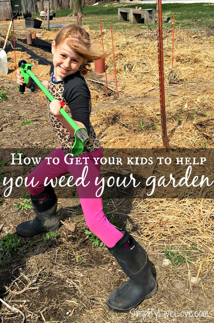 It's not always easy to motivate them kids to help out, but these four tips will get your kids to help you weed your garden and have fun in the process!