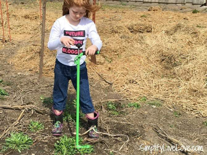 Weed Zinger upright weed killer