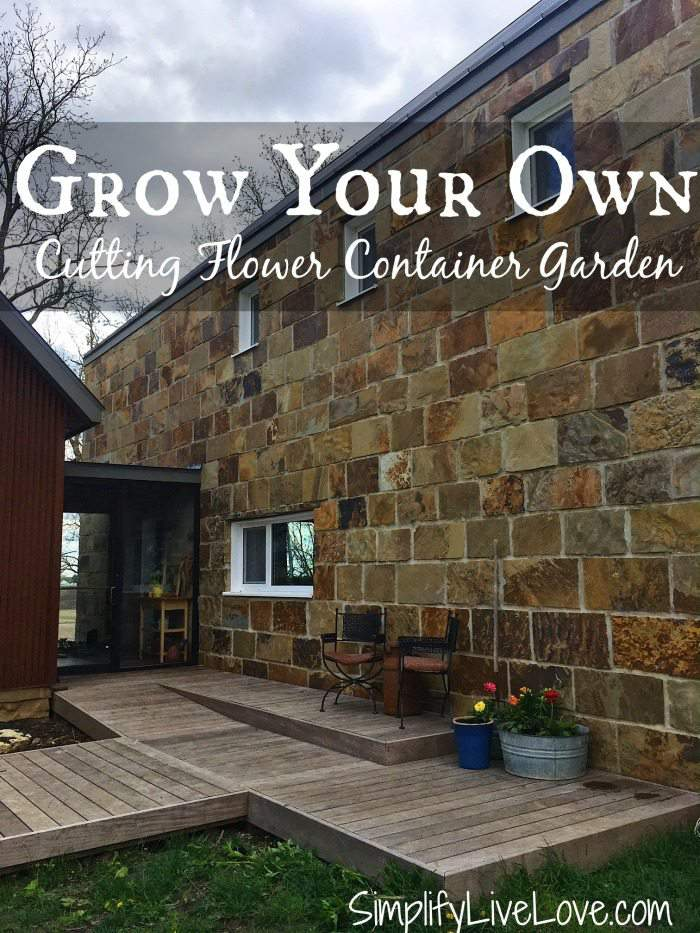 Grow your own Cutting Flower Container Garden. You don't have to have a big space to grow your own flowers. These helpful tips will help you get started!
