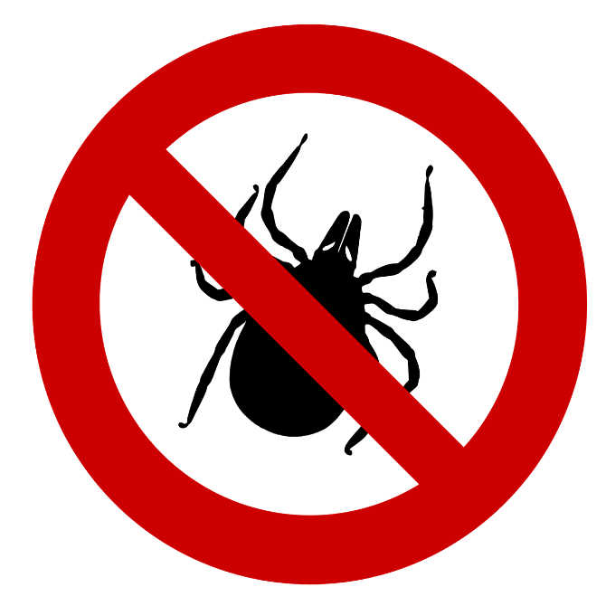 Steps you should take if you are bitten by a tick.