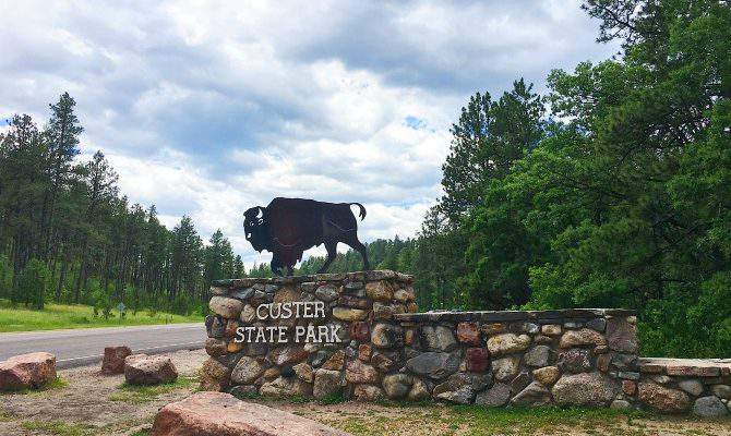 Two Amazing Drives to Take at Custer State Park, South Dakota