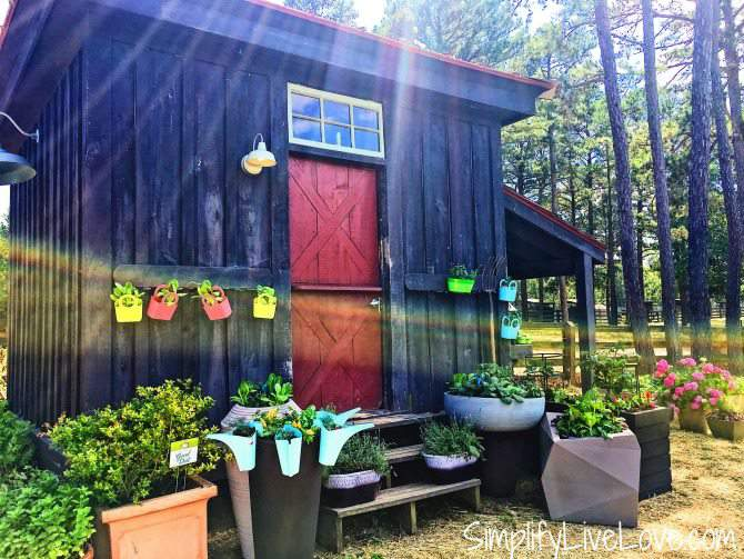 garden shed at moss mountain farm