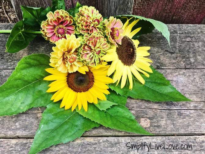 dry your own flowers to give as gifts
