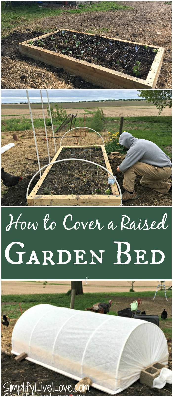 How to cover a raised garden bed to protect against insects and also to extend your growing season. It's not super hard!