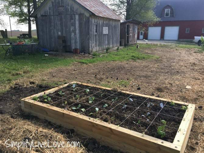 cover a raised garden bed
