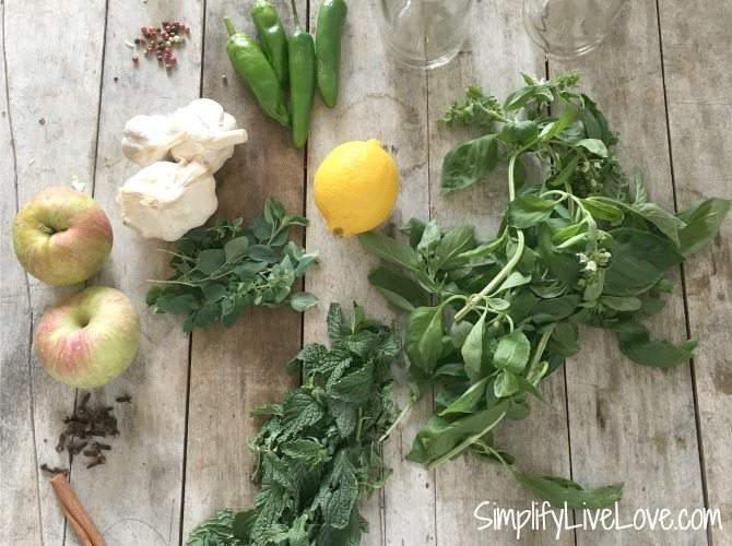 ingredients for homemade gourmet vinegar